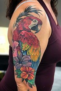 Parrot bird Tattoos meaning