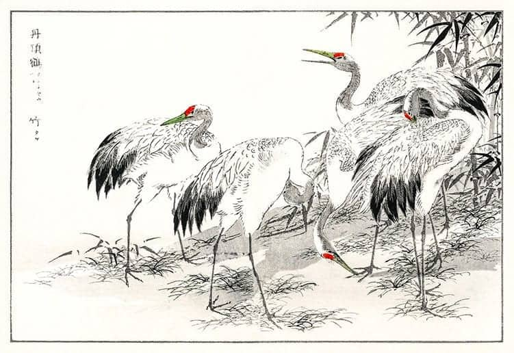 Crane meaning in China